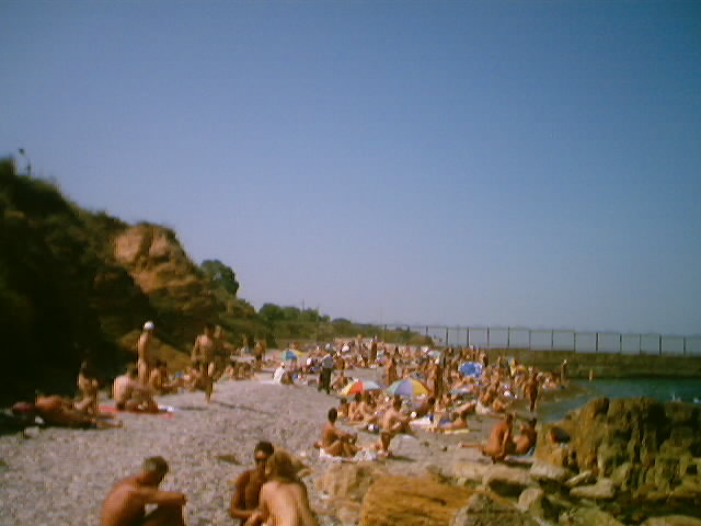 Chkalovsky nudist beach